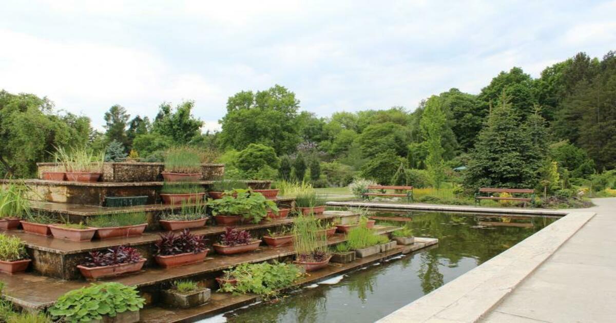 Кошицкий ботанический сад