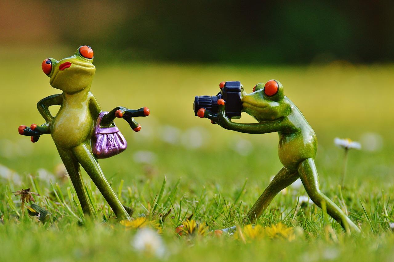 To photographers