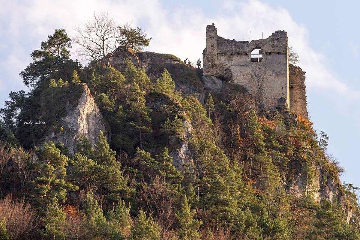 Град Гричов