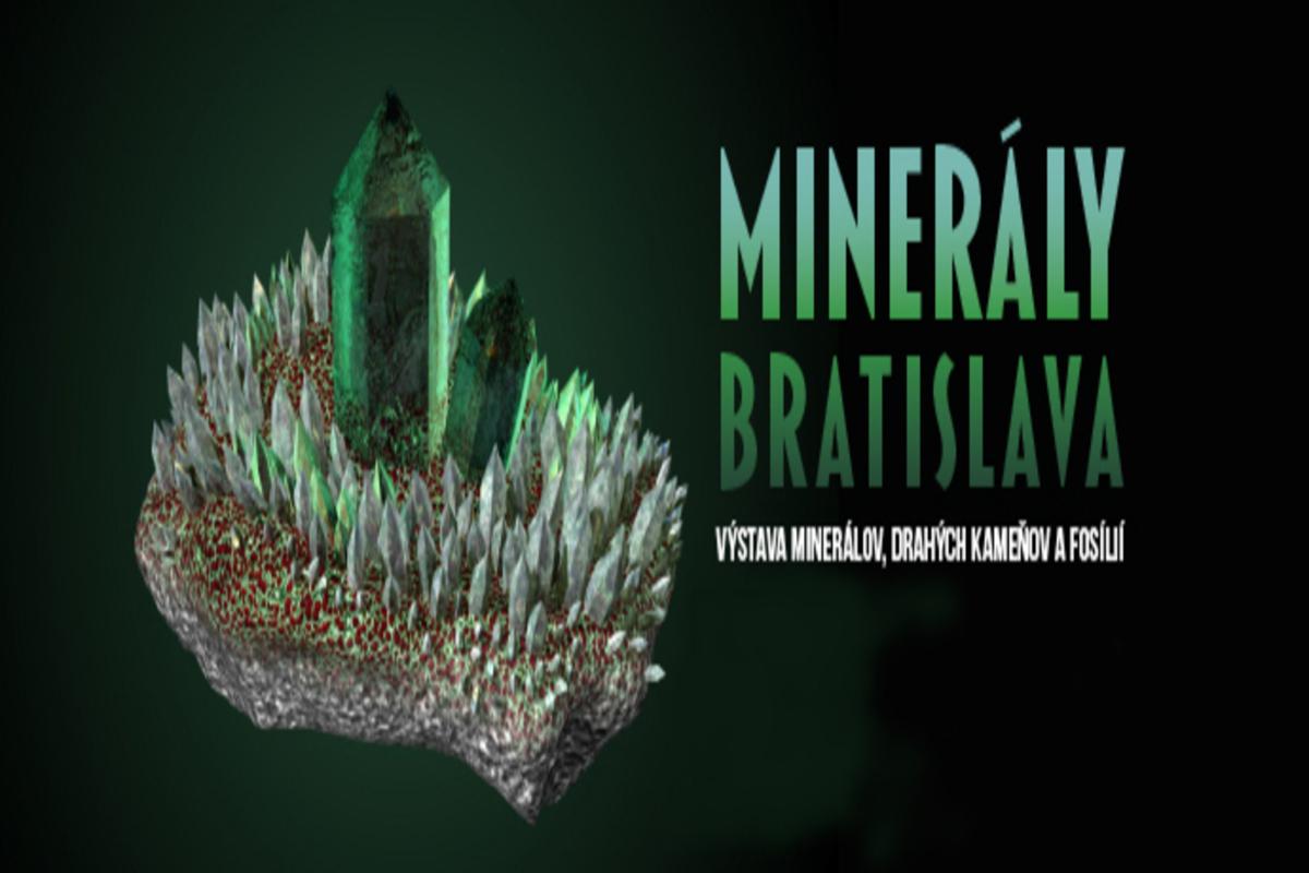 minerals2020.wstlp 1