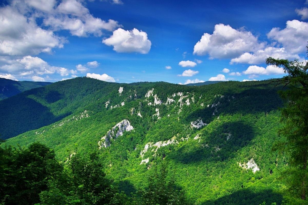 Национальный парк Муранска Планина